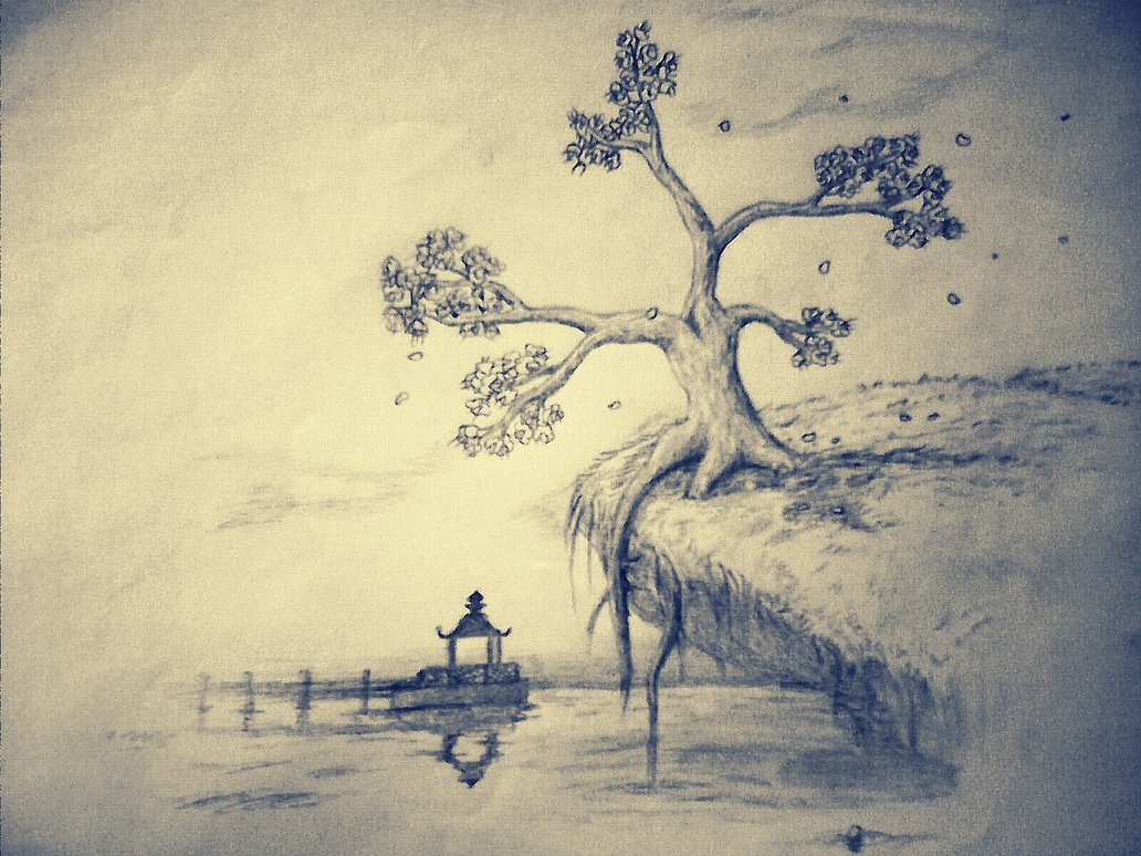 Cherry Blossom Tree Pencil Drawing at GetDrawings.com | Free for ...