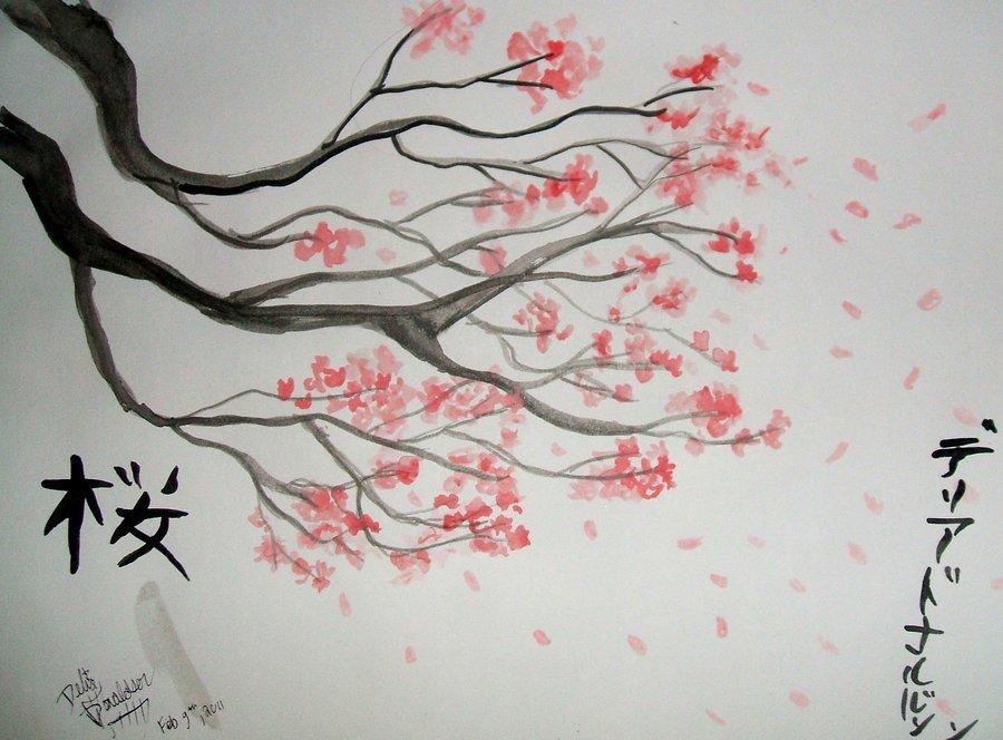 cherry blossom tree pencil drawing wwwpixsharkcom