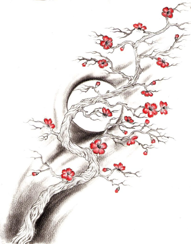 792x1009 Cherry Blossom Tree By Bikini666