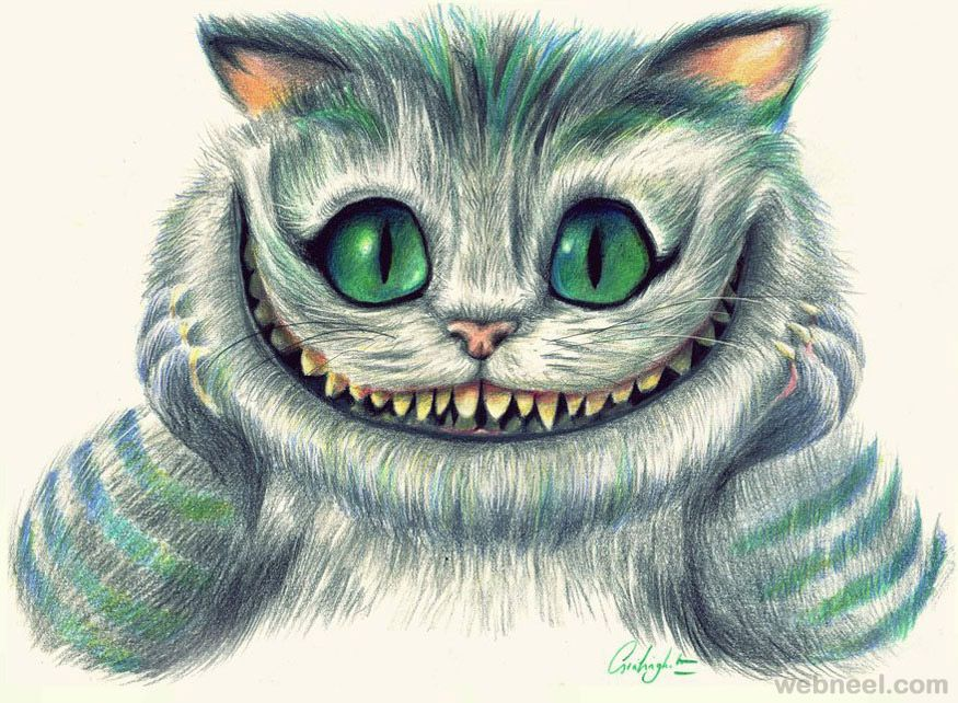 875x642 Evil Cat Drawing Chat Cat Drawing And Cat