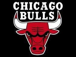 253x190 Chicago Bulls Logo Drawing Free Image