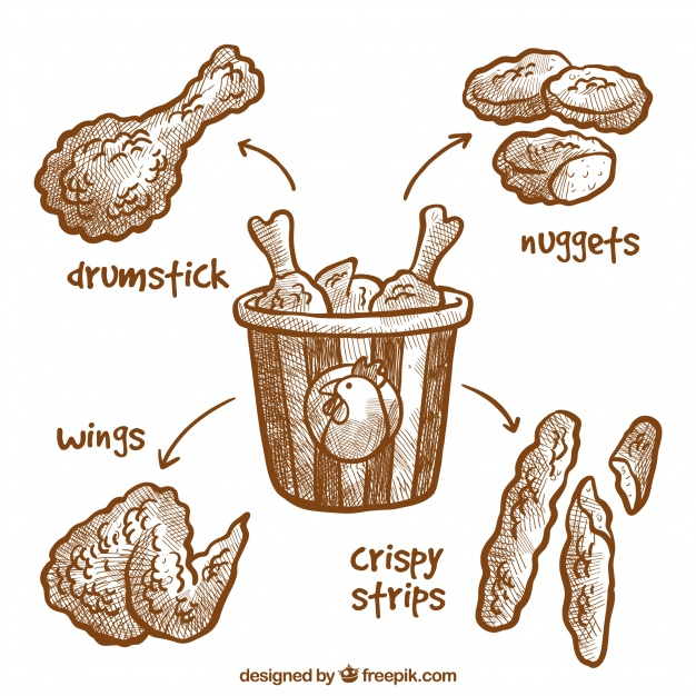 626x626 Delicious Hand Drawn Fried Chicken Vector Free Download