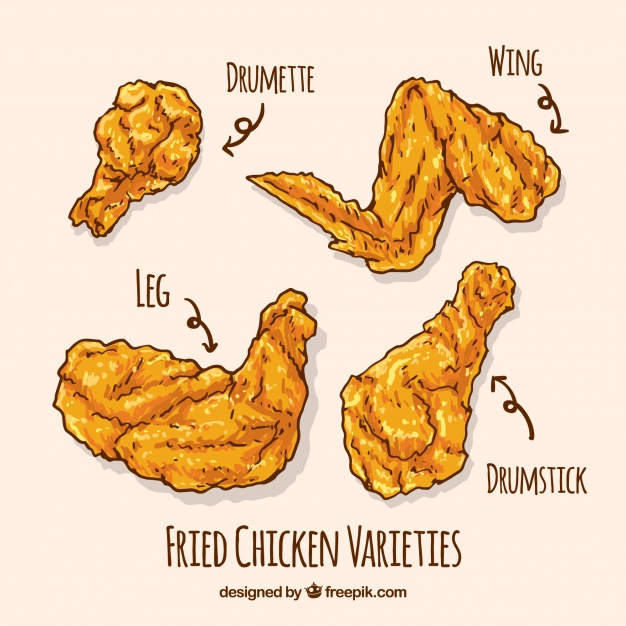 626x626 Variety Of Hand Drawn Fried Chicken Vector Free Download