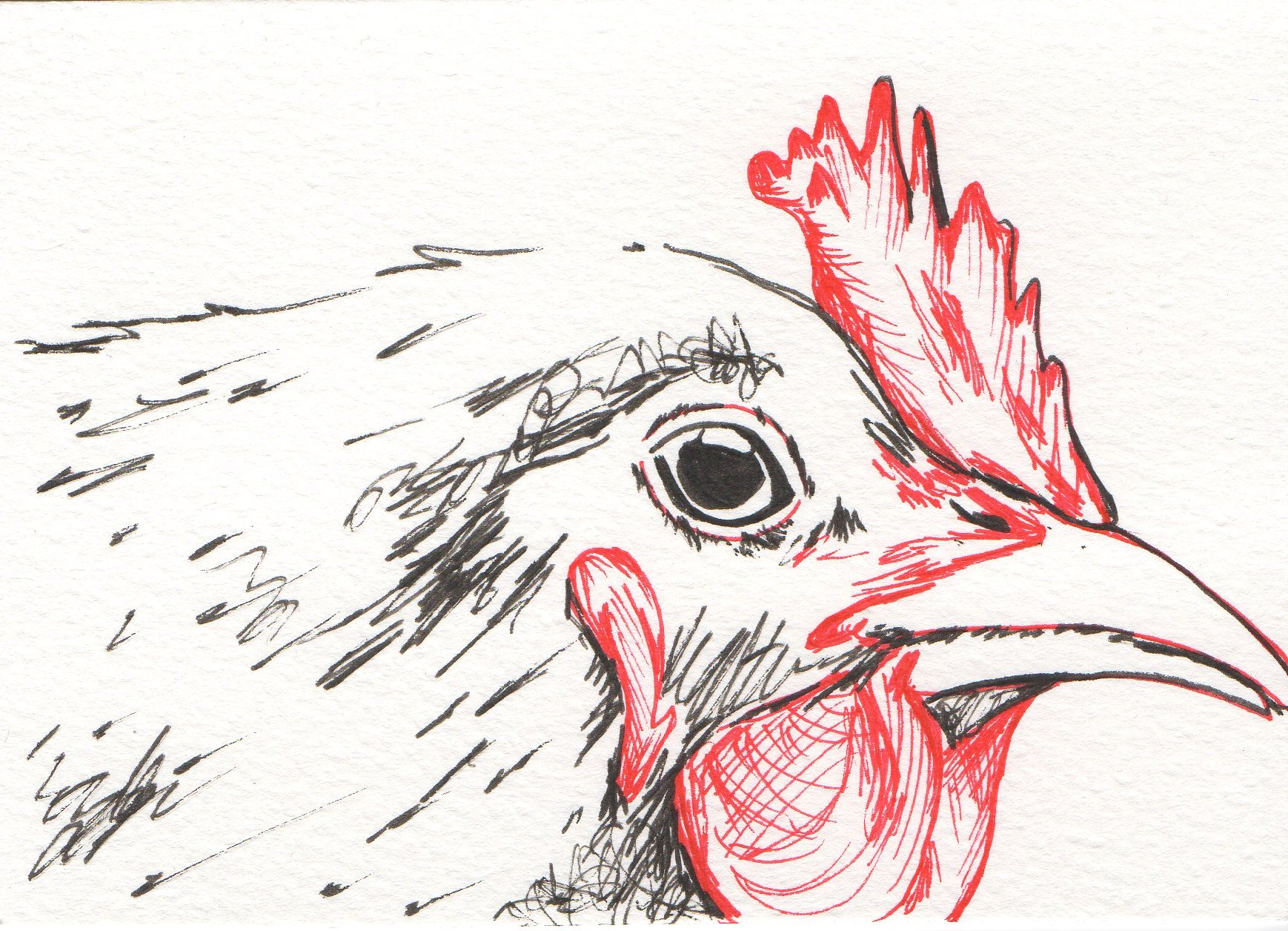 1738x1256 Original Art, Chicken Drawing Signed By The Artist Dr. Nice Dr. Nice