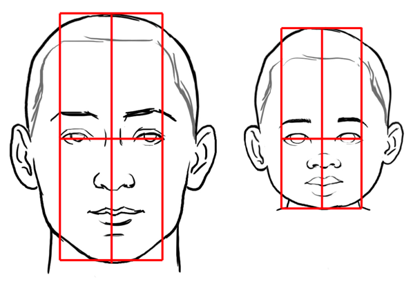 598x414 Mastering Proportions Drawing A Child's Face