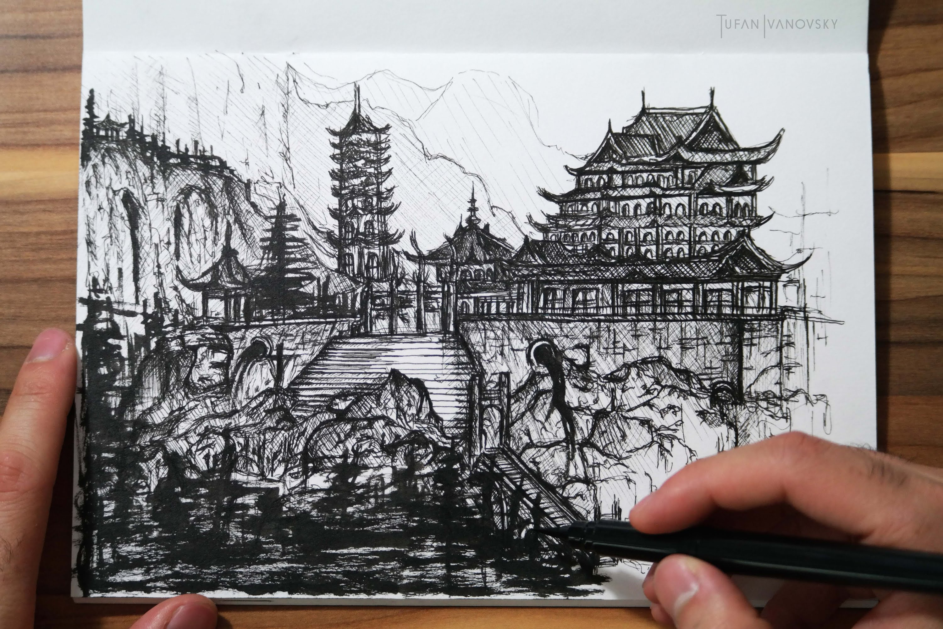 3000x2000 Speed Drawing (Ink)