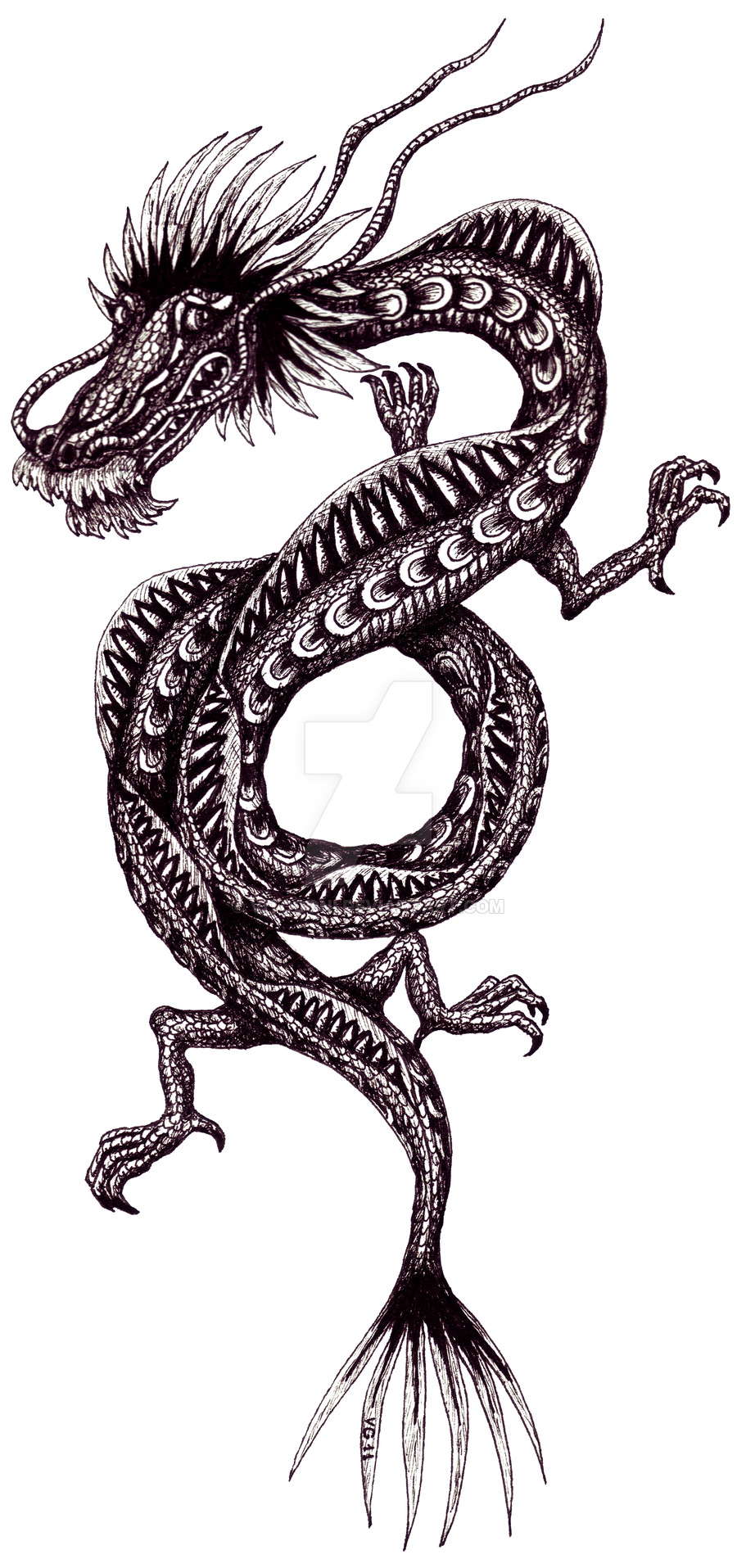 900x1915 Chinese Dragon Black And White Pen Ink Drawing By Vitogoni
