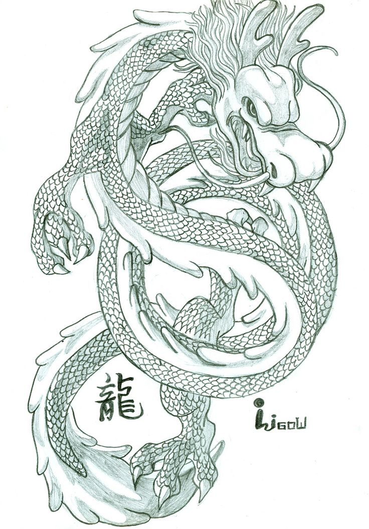736x1056 80 Best Chinese Dragons Images On Chinese Dragon, Kite