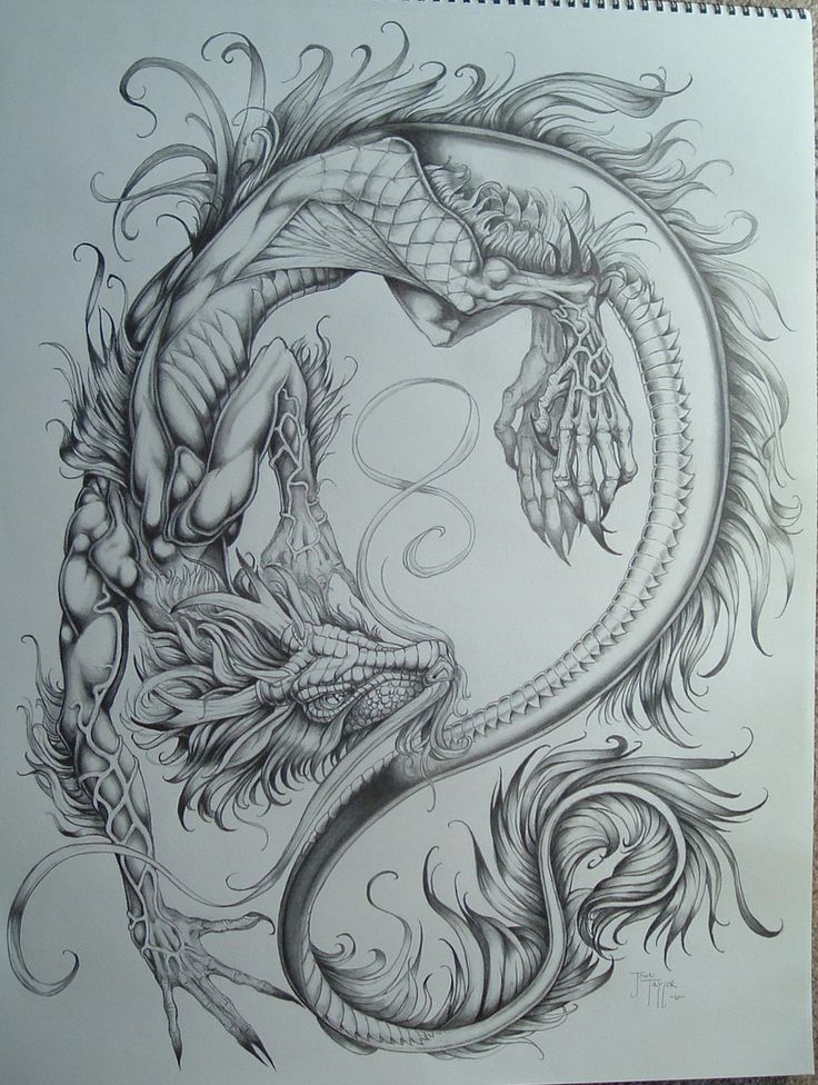 736x976 Chinese Language Dragon . Have A Look