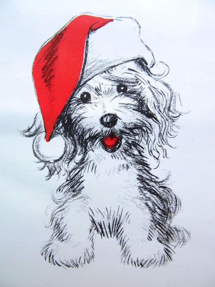 Christmas Dog Drawing at GetDrawings.com | Free for personal use ...
