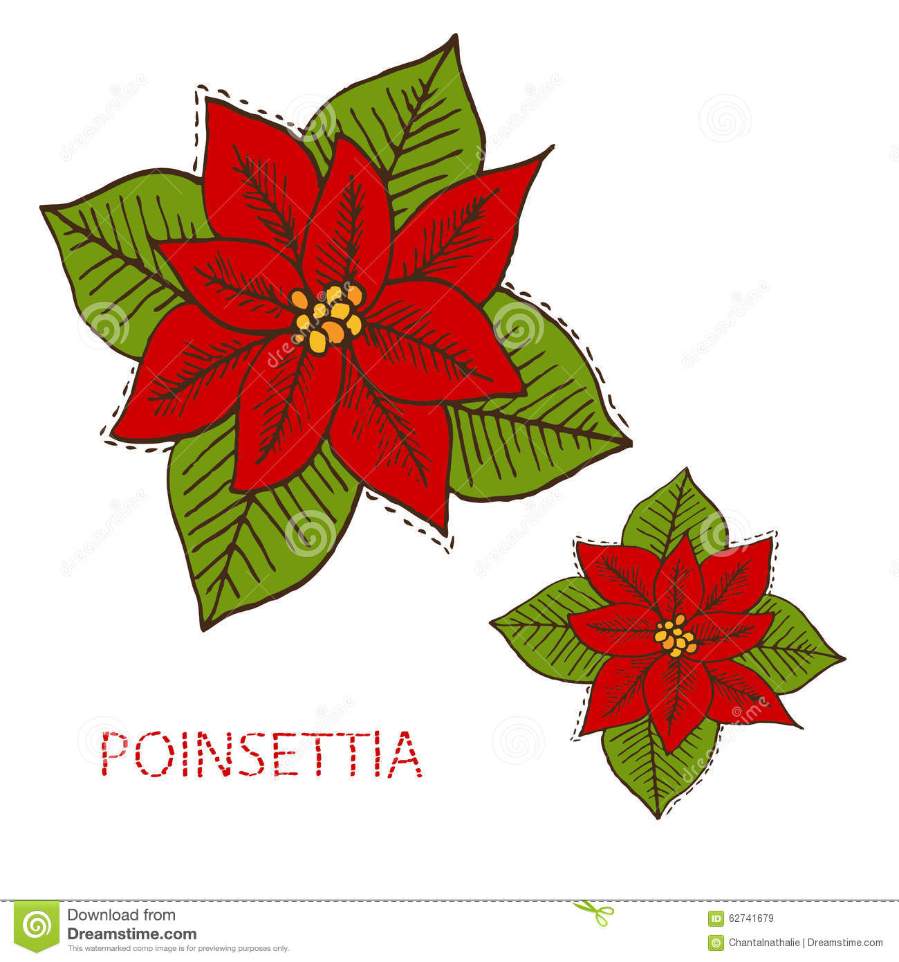 Christmas Flower Drawing at GetDrawings.com | Free for personal use ...