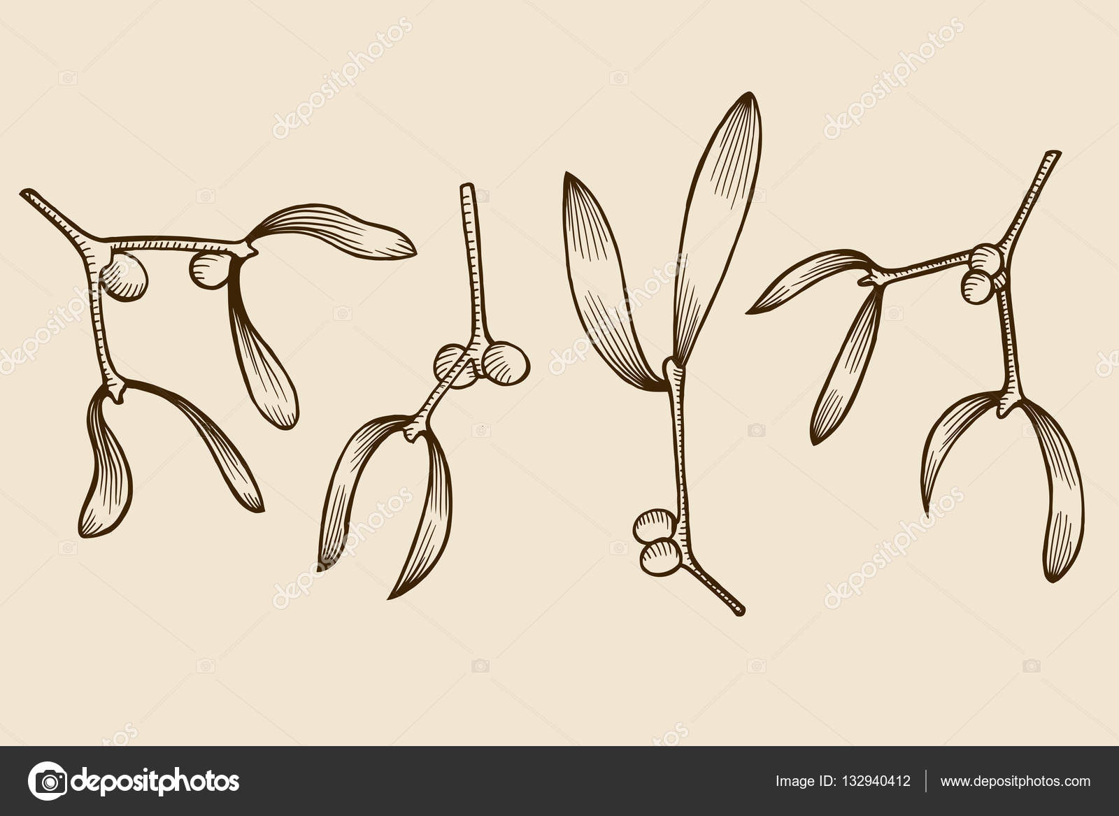 1600x1167 Christmas Mistletoe Branch Drawing Stock Vector Frescomovie