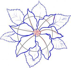 302x288 How To Draw A Poinsettia Tips Amp Tidbits Artdrawingpainting