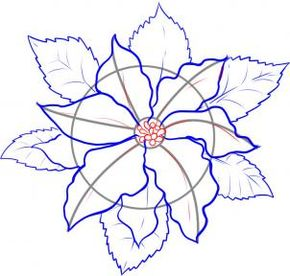 290x276 How To Draw A Poinsettia Drawing Poinsettia, Draw