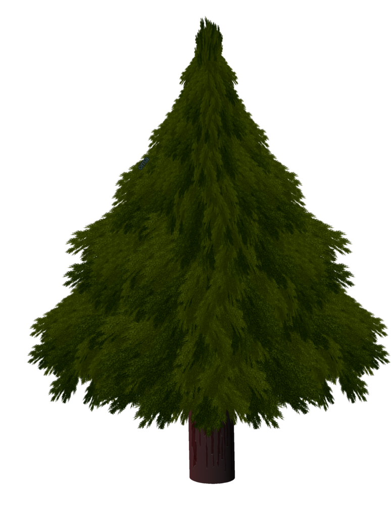 774x1032 Christmas Tree By Omagrandmother