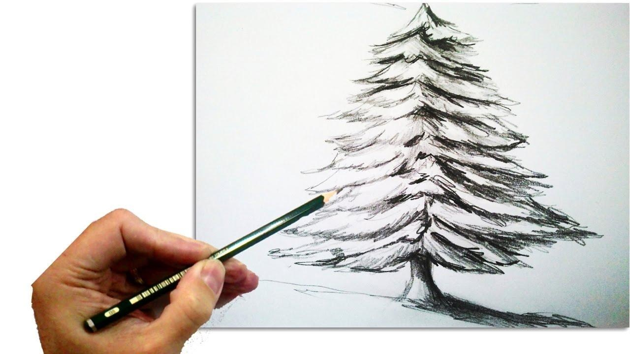 1280x720 How To Draw A Realistic Christmas Tree Simple Living Tree In