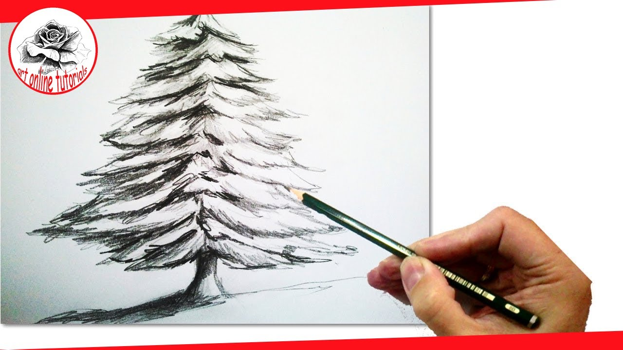 1280x720 How To Draw A Realistic Christmas Tree With Pencil