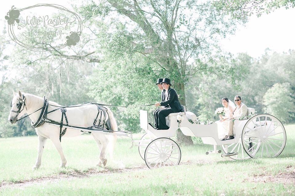 960x638 Cinderella Coach Amp Classic Horse Carriage Available For Weddings