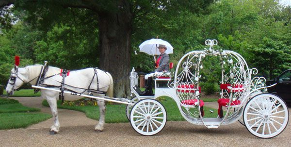 600x305 Horse Amp Carriage Cinderella Carriage Specialty Transportation