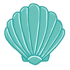 236x236 Scallop Shell Drawings Scallop Shells And Drawings