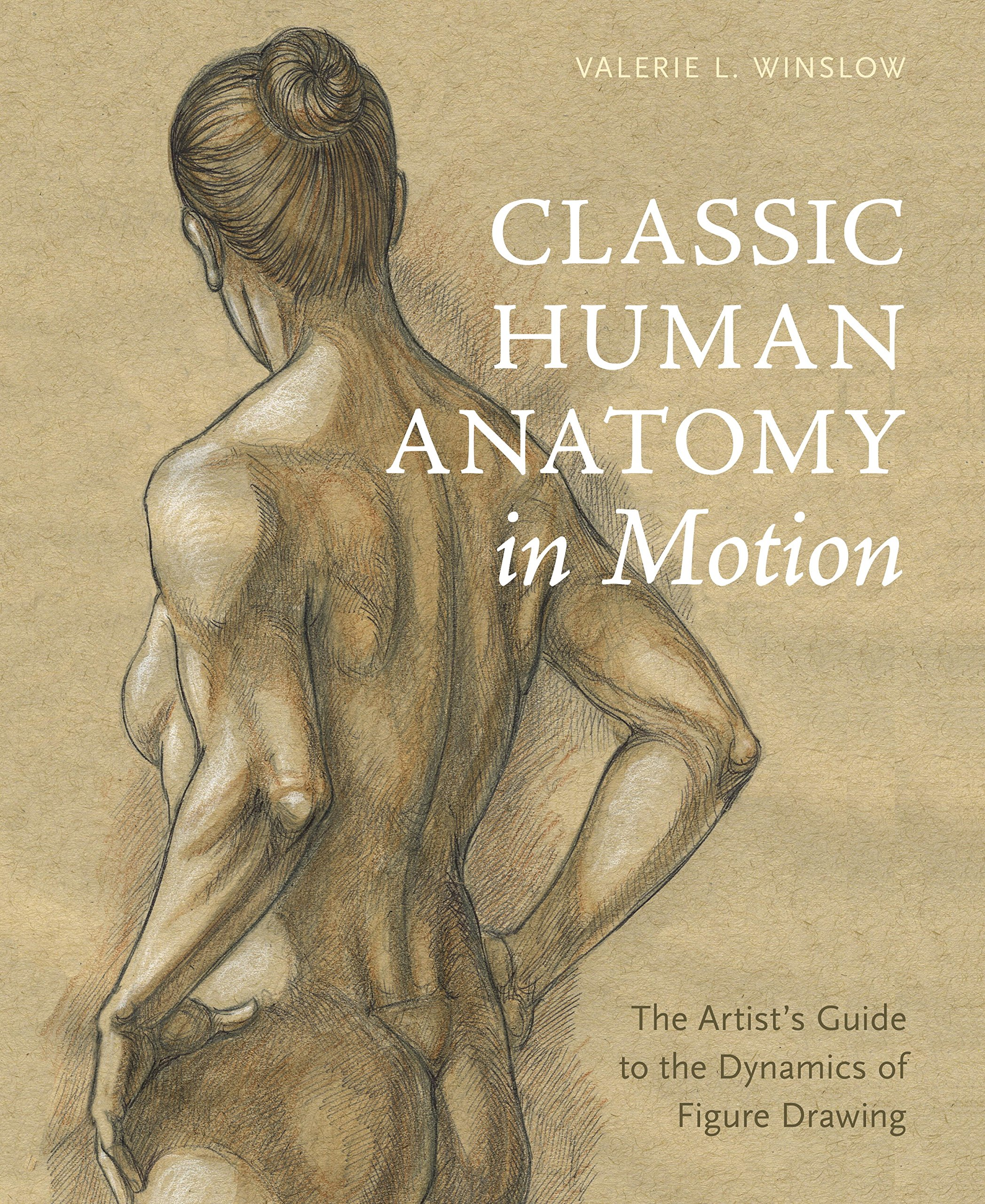 2095x2560 Classic Human Anatomy In Motion Artist's Guide To