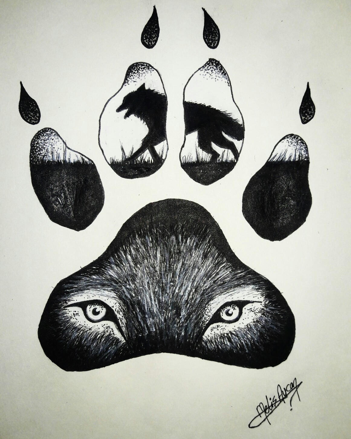 1161x1451 Wolf Claw Drawing My Drawings Drawings