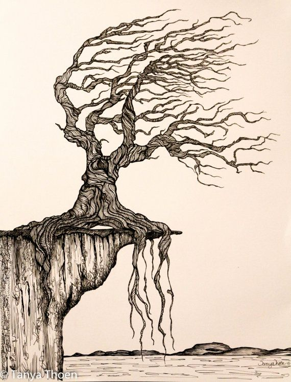 570x747 Ink Drawing,ged To Perfection, Wind Blown Tree Poised On