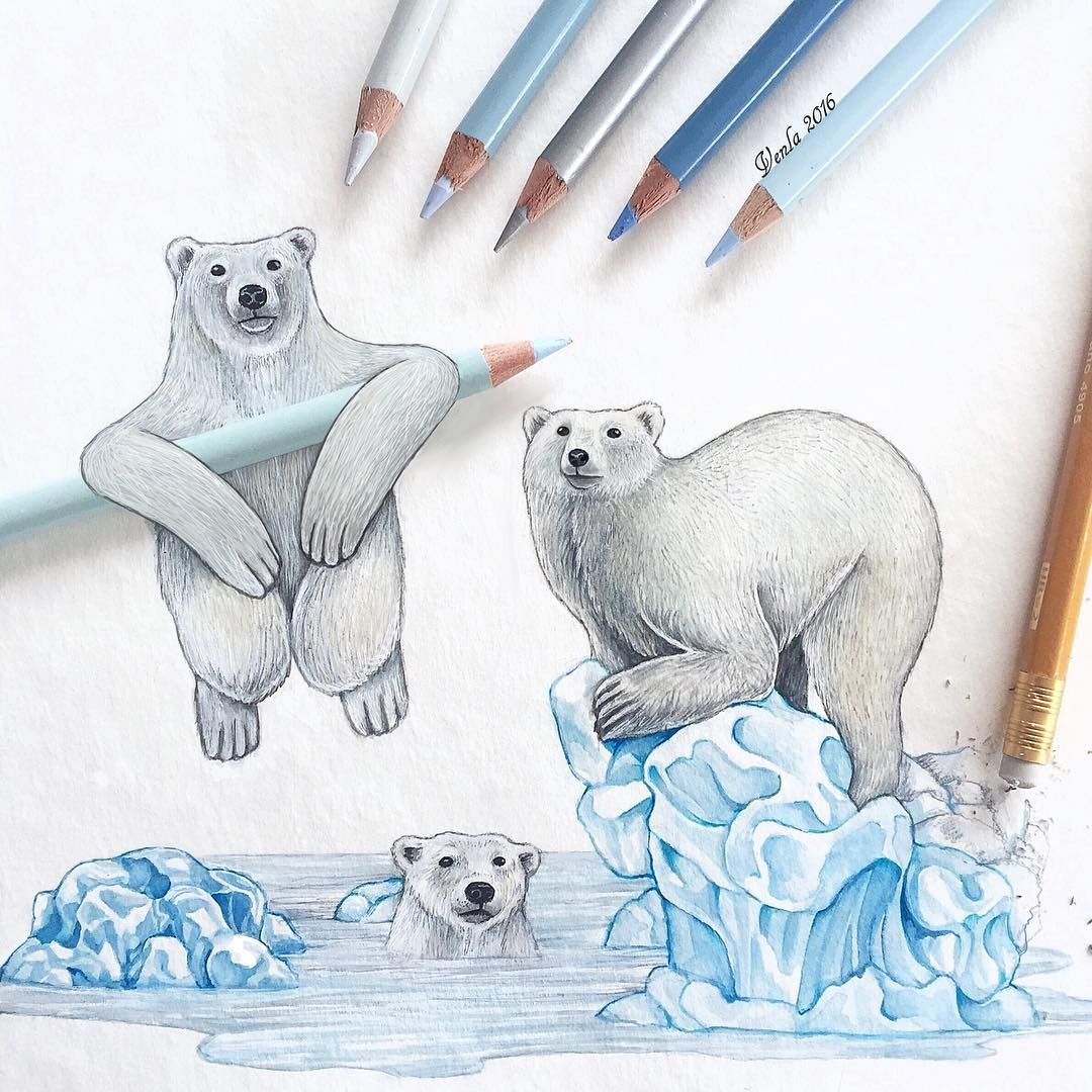 1080x1080 Polar Bears Inspired By Climate