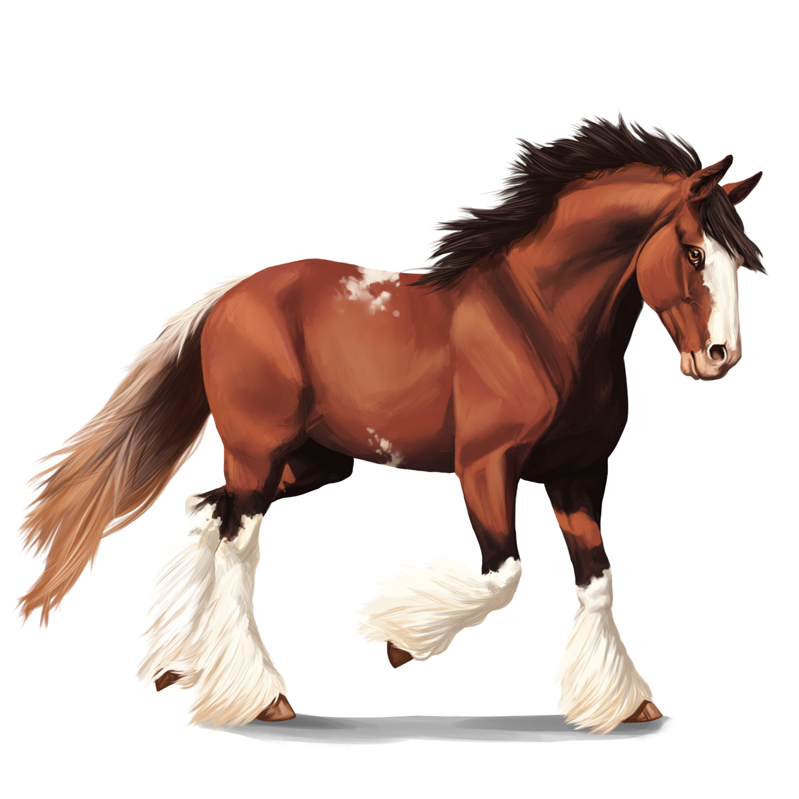 1600x1600 Clydesdale Horse By Memuii
