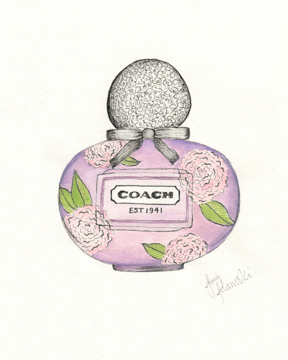 570x712 Coach Poppy Flower Drawing Print Pen And Ink With Watercolor