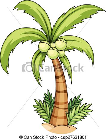 357x470 Closeup Single Coconut Tree With Coconuts Vector Clipart