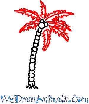 300x350 How To Draw A Coconut Palm Tree