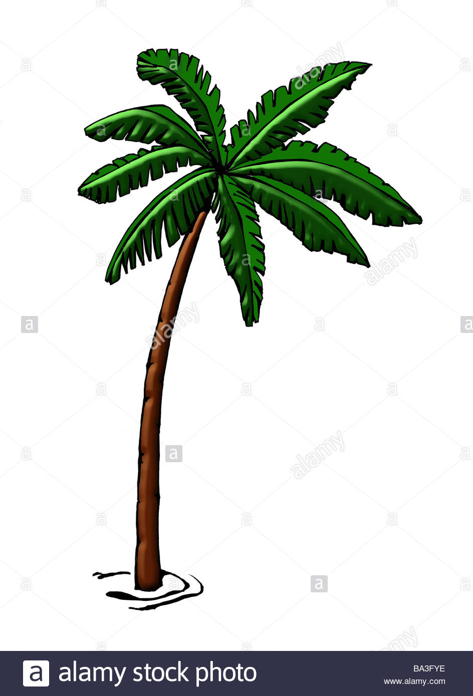 944x1390 Illustration Palm Graphics Drawing Watercolor Tree Coconut Palm