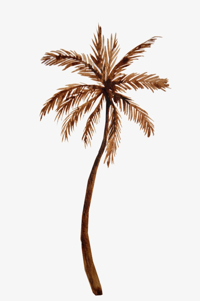 650x978 Coconut Tree, Hand Painted Coconut Trees, Drawing Plant, Trees Png