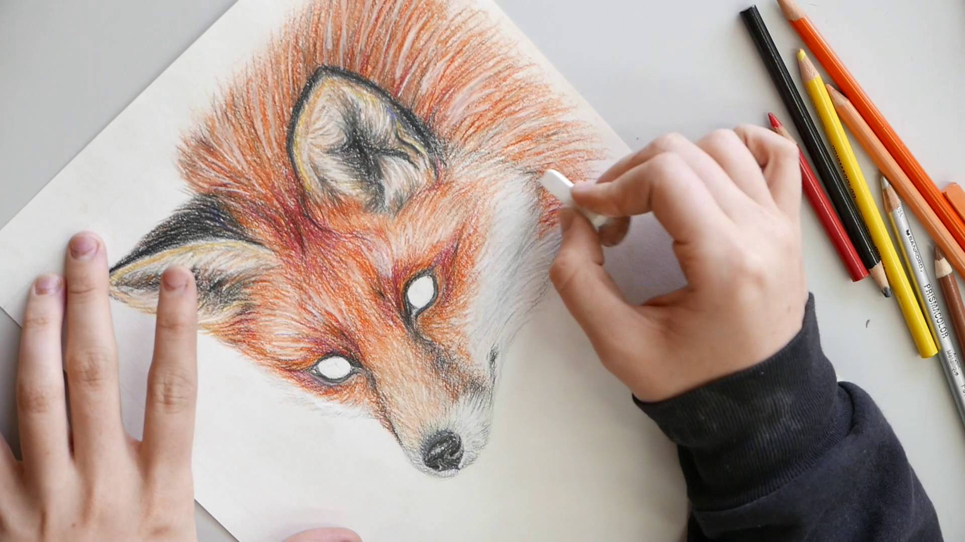 1920x1080 Red Fox Colored Pencil Drawing