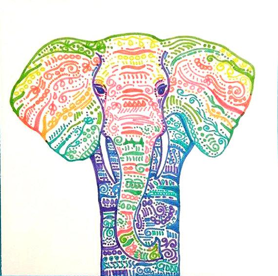 570x567 Rainbow Elephant Drawing Colorful Elephant Detailed Elephant