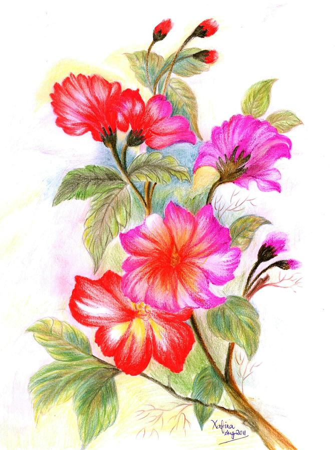 Colorful Flowers Drawing at GetDrawings.com   Free for personal use ...