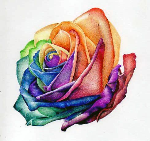 489x458 Image Result For Flower Drawing Colour Art Of Teaching