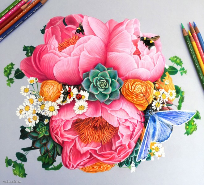 660x599 Flowers Color Pencil Drawing By Morgan Davidson 16