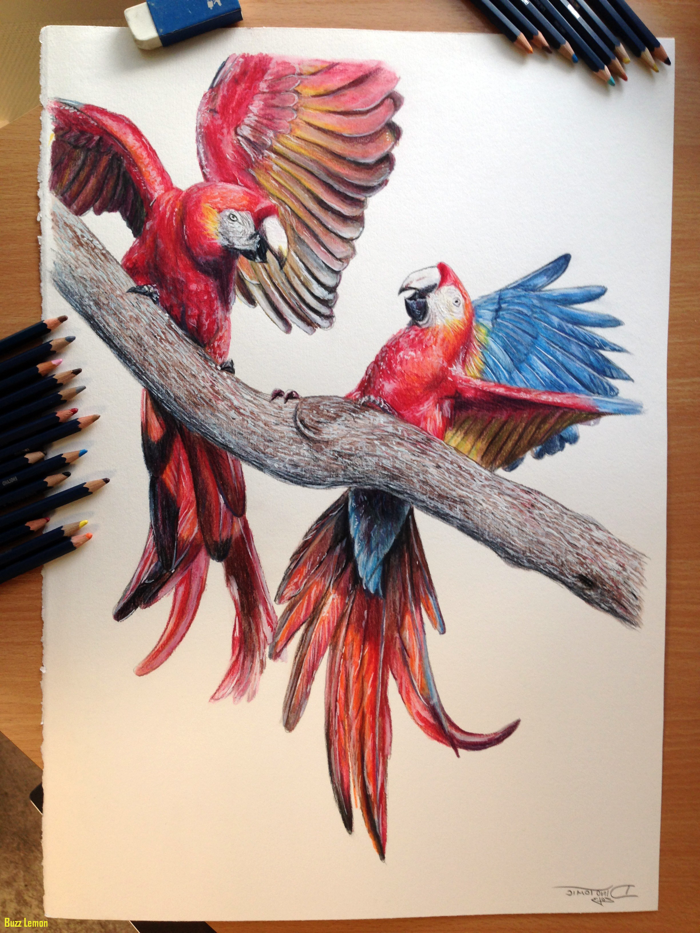 colour drawing at getdrawings free download