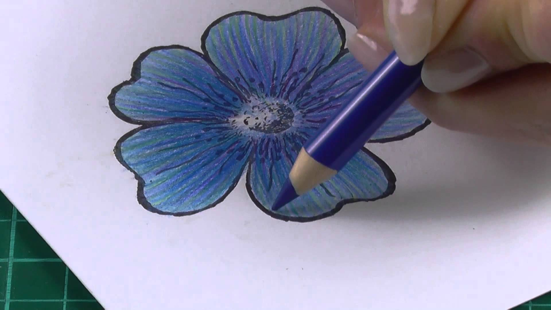 1920x1080 Colouring Technique With Coloured Pencils Flowers