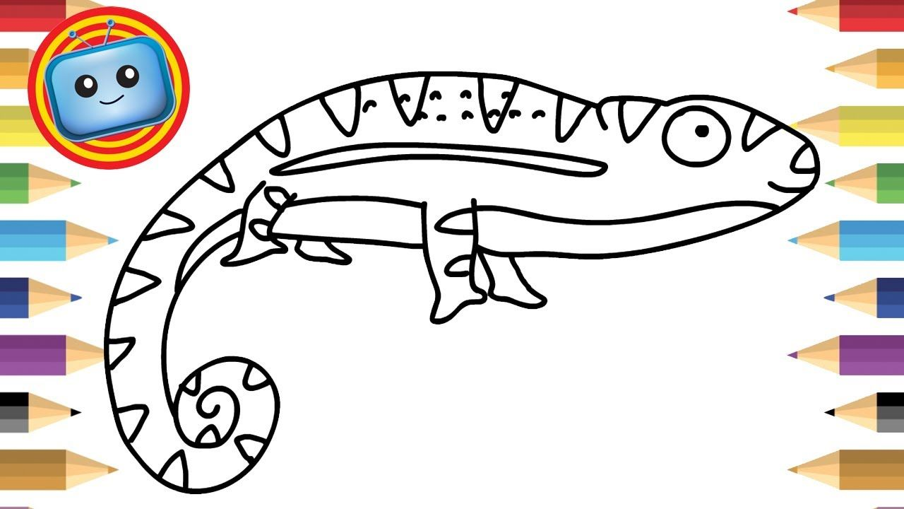 1280x720 How To Draw A Chameleon Colouring Book Simple Drawing Game