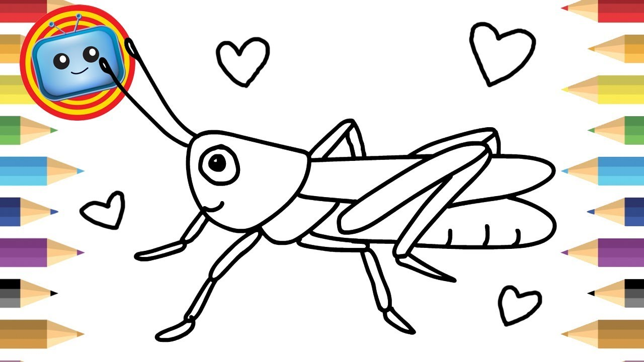 1280x720 How To Draw A Grasshopper Colouring Book Simple Drawing Game