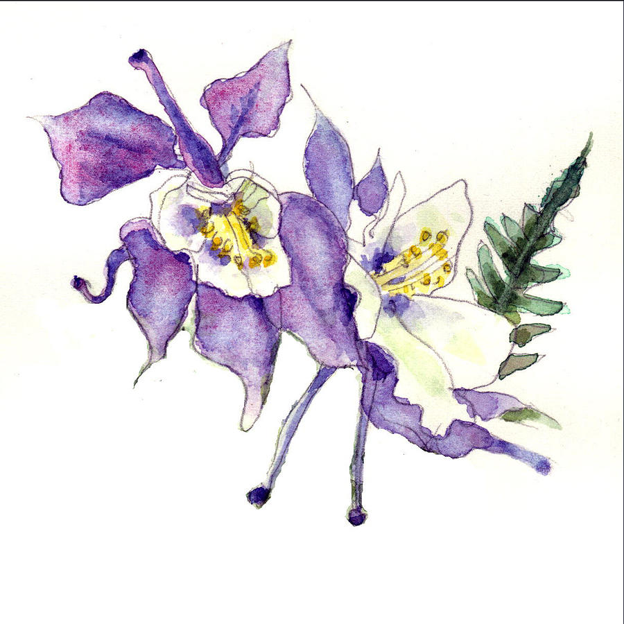 Columbine flower drawing at getdrawings free for personal use 900x900 columbine flowers art painting by blenda studio izmirmasajfo