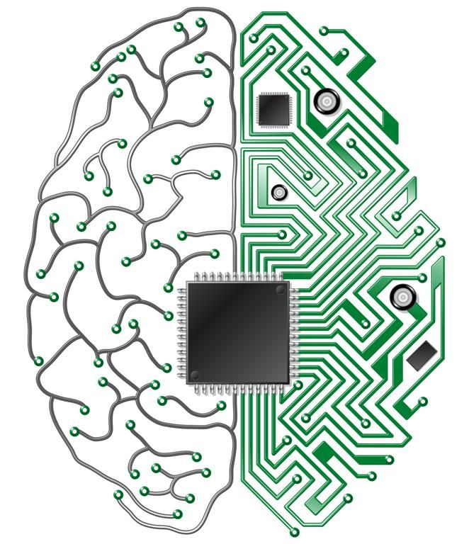 662x768 Microchip Style Brain Illustration Favority Craft Deocorate
