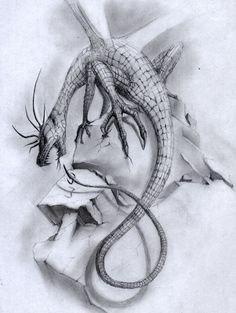 236x313 10 Cool Dragon Drawings For Inspiration,