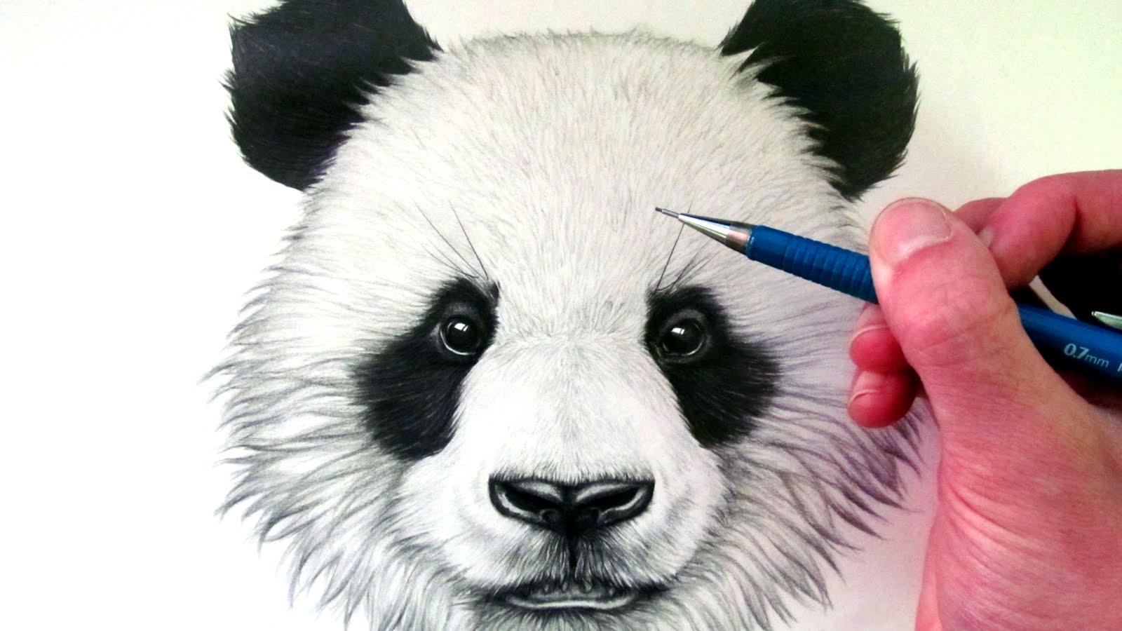 Niedlich Süße Panda Malvorlagen Ideen - Malvorlagen-Ideen ...
