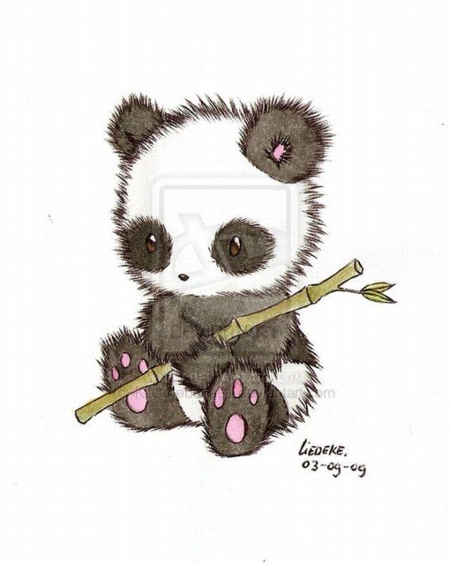 640x800 Cute Panda Drawing