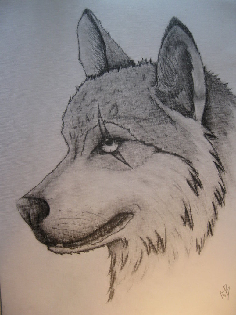 774x1032 Cool Drawings Of Wolves Drawn Werewolf Awesome