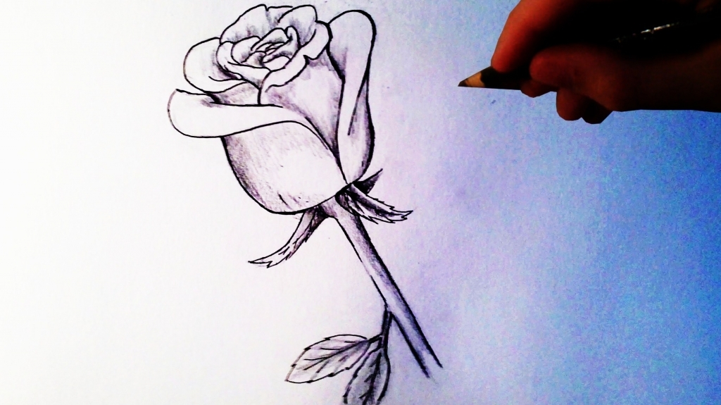 1024x575 Cool Simple Drawings How To Draw A Rose Easy Tutorial Youtube